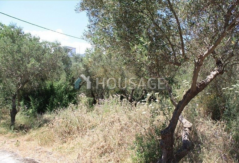 2 bed a house for sale in Chania, Chania, Greece, 85 m² - photo 6