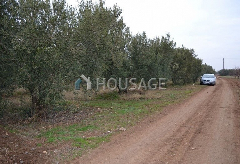 Land for sale in Nea Moudania, Kassandra, Greece - photo 1