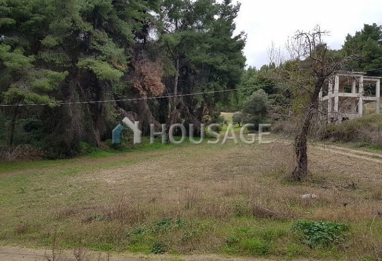 Land for sale in Paliouri, Kassandra, Greece - photo 3