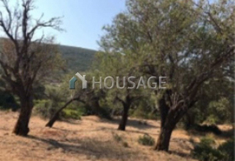 Land for sale in Lefkada, Greece - photo 8
