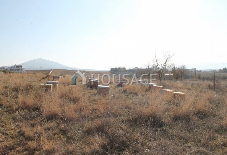 Land for sale in Panorama, Kerkira, Greece, 1350 m² - photo 5
