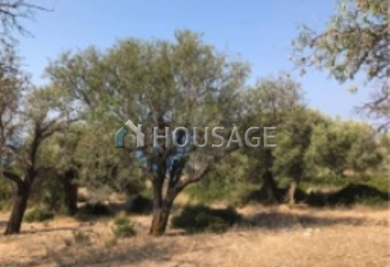 Land for sale in Lefkada, Greece - photo 18