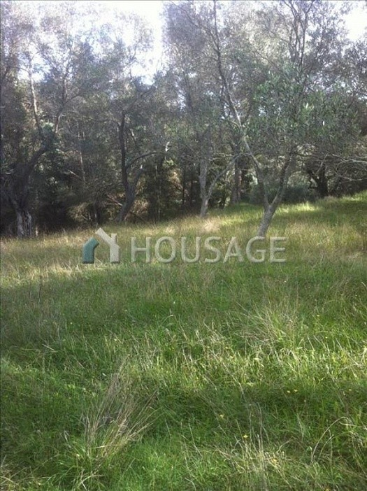 Land for sale in Temploni, Kerkira, Greece - photo 2