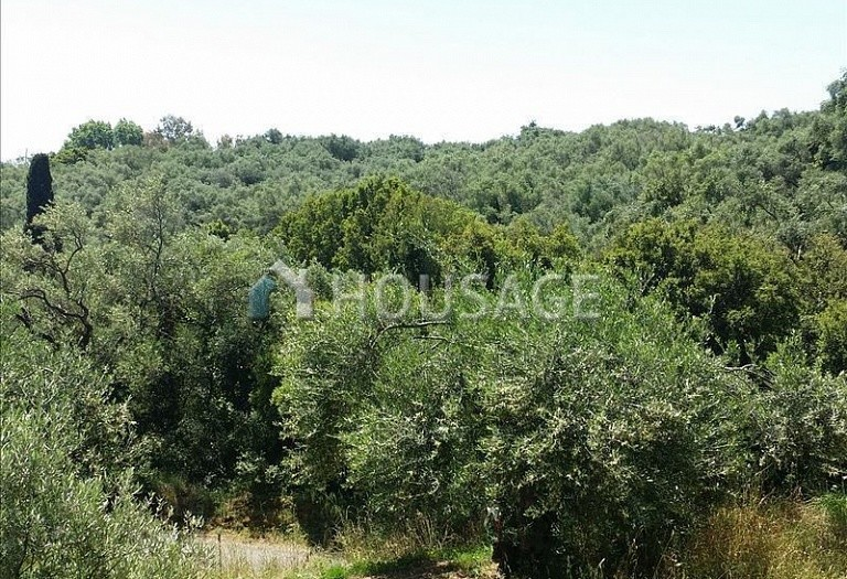 Land for sale in Barbati, Kerkira, Greece - photo 1