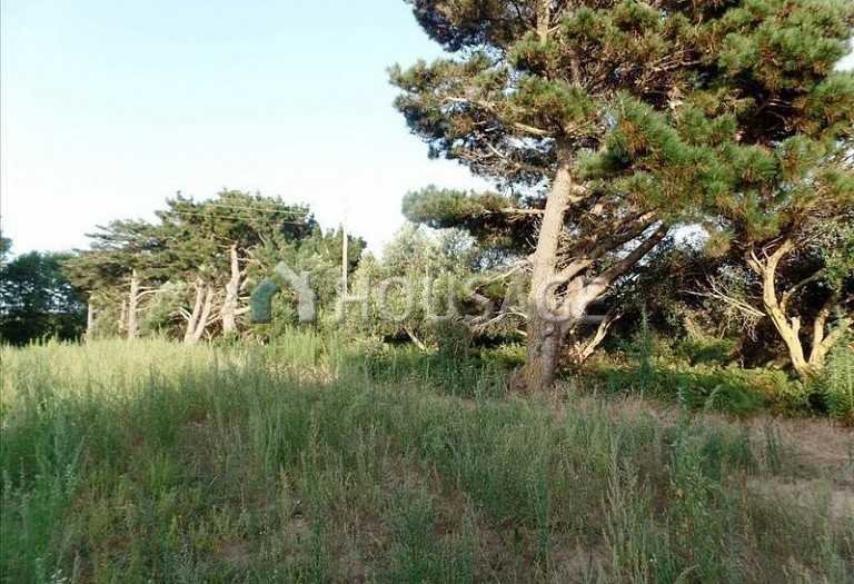 Land for sale in Chalikouna, Kerkira, Greece - photo 8