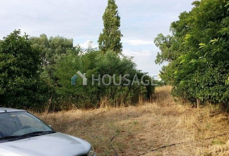 Land for sale in Achaea, Greece - photo 2