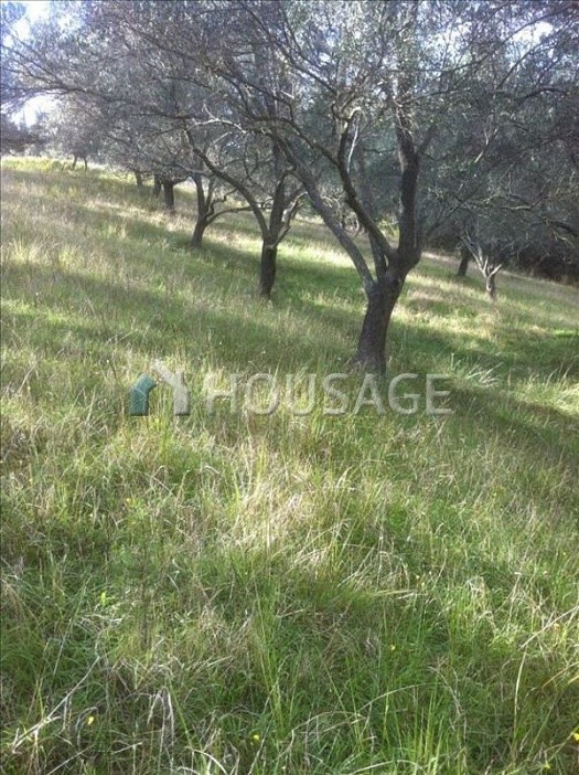 Land for sale in Ag. Georgios Pagon, Kerkira, Greece - photo 2