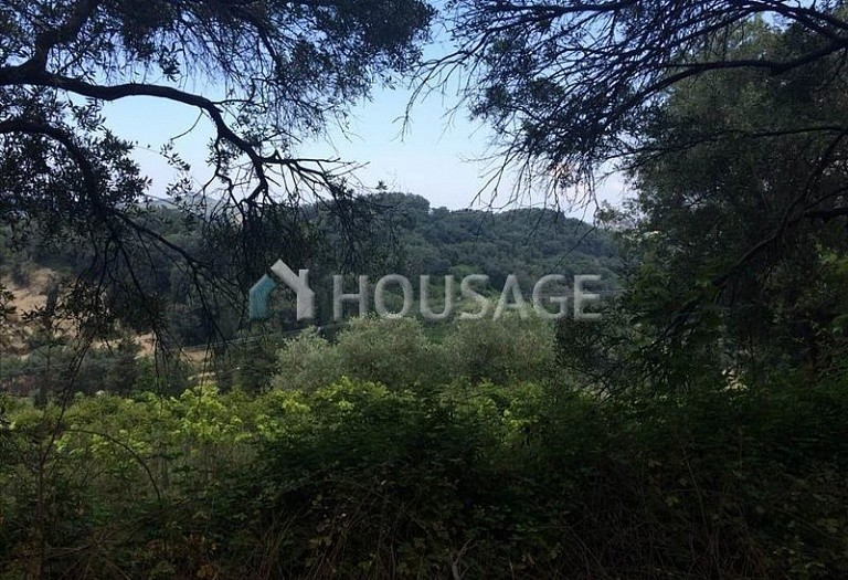 Land for sale in Arkadades, Kerkira, Greece - photo 4