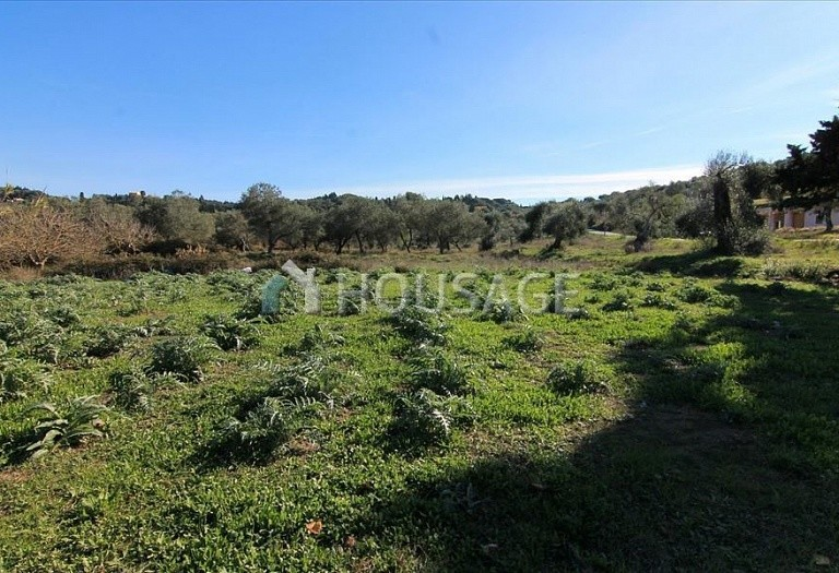 Land for sale in Kavvadades, Kerkira, Greece - photo 5