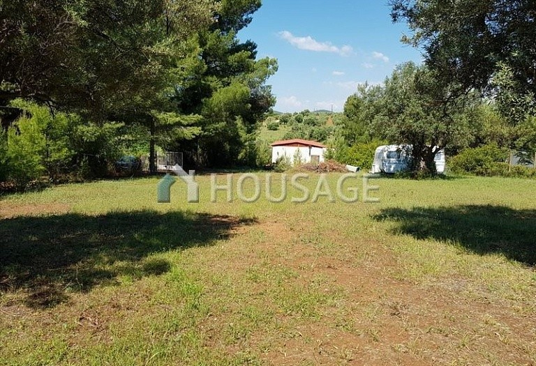 Land for sale in Nikitas, Sithonia, Greece - photo 6