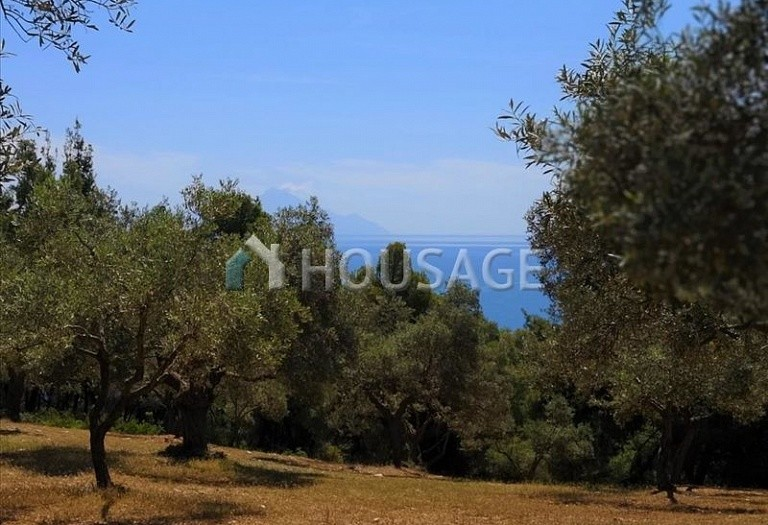 Land for sale in Agios Nikolaos, Sithonia, Greece - photo 6