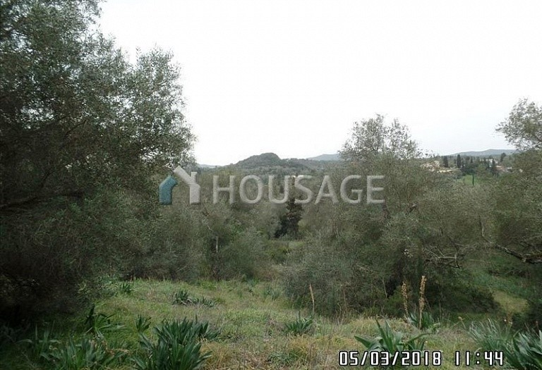 Land for sale in Poulades, Kerkira, Greece - photo 3