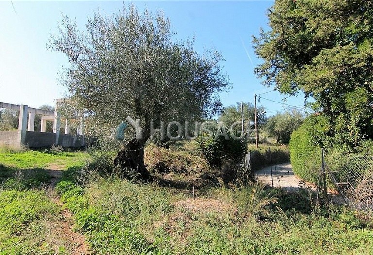 A house for sale in Kommeno, Kerkira, Greece, 300 m² - photo 11
