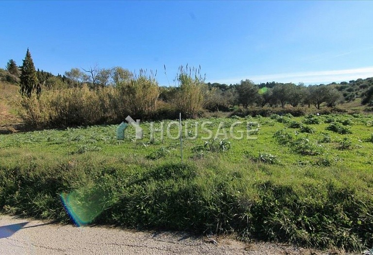 Land for sale in Kavvadades, Kerkira, Greece - photo 9