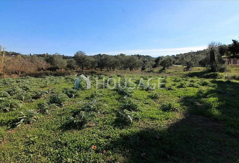 Land for sale in Kavvadades, Kerkira, Greece - photo 1