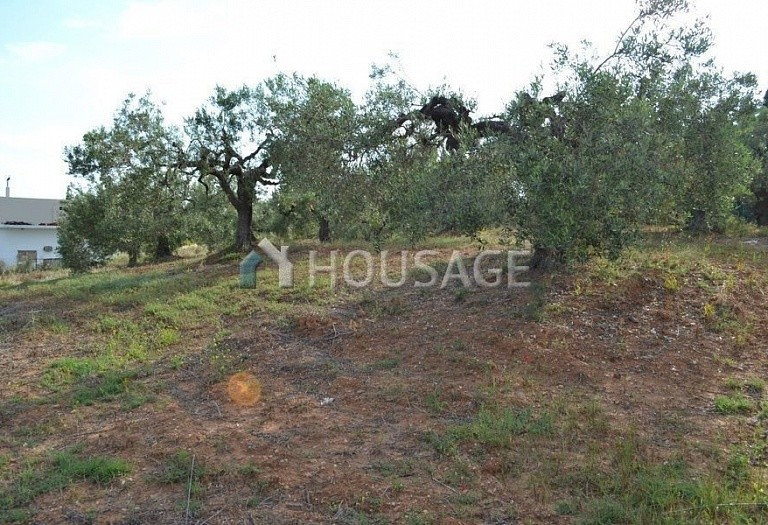 Land for sale in Nea Moudania, Kassandra, Greece - photo 3