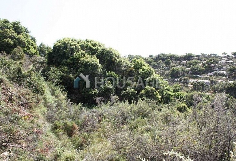 Land for sale in Adele, Chania, Greece - photo 6