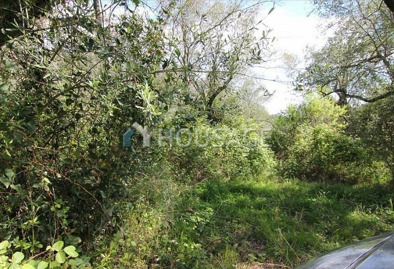 Land for sale in Spartylas, Kerkira, Greece - photo 2