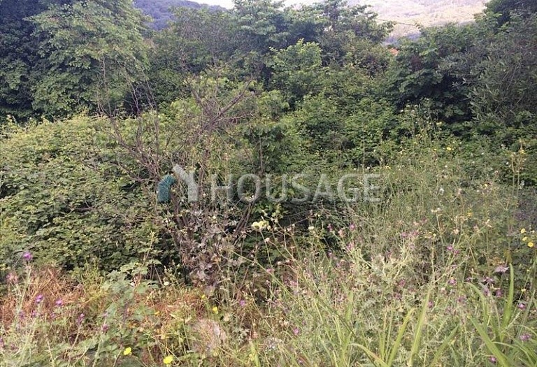 Land for sale in Arkadades, Kerkira, Greece - photo 1