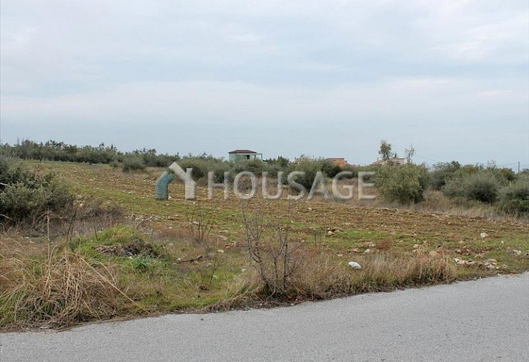 Land for sale in Leptokarya, Pieria, Greece - photo 2