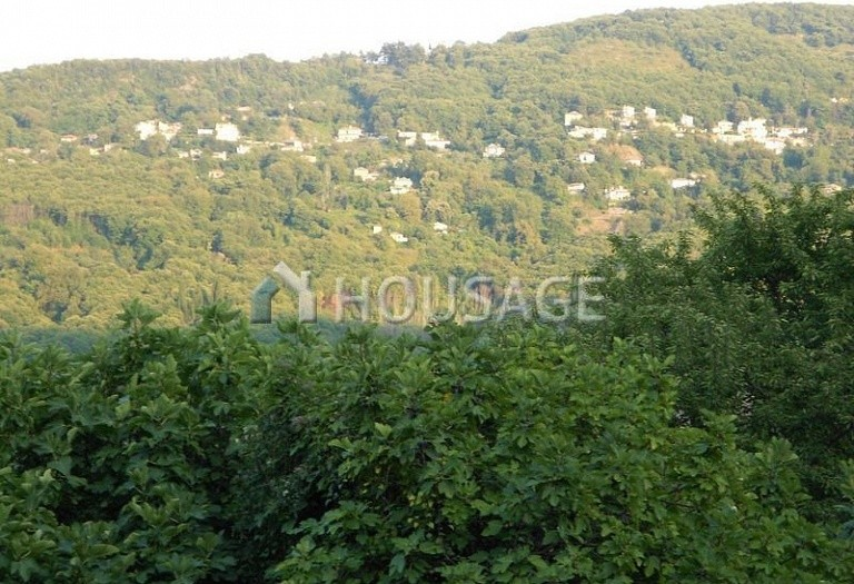 Land for sale in Cherefto, Magnesia, Greece - photo 6