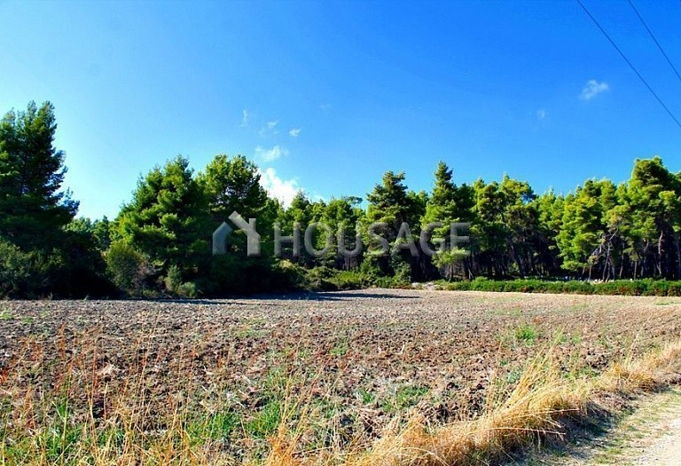 Land for sale in Paliouri, Kassandra, Greece - photo 2