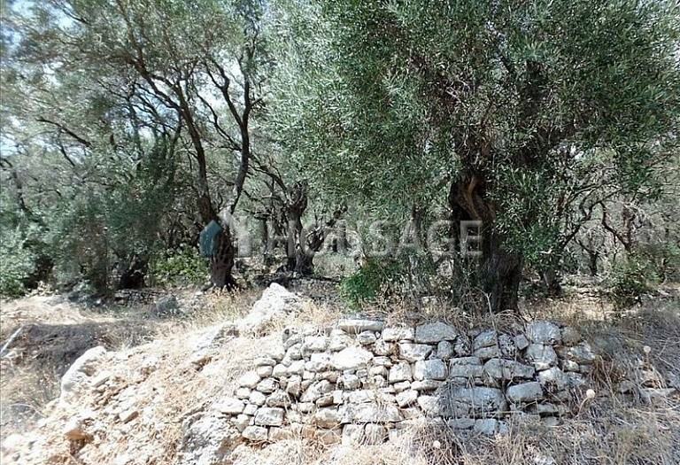 Land for sale in Nisaki, Kerkira, Greece - photo 6