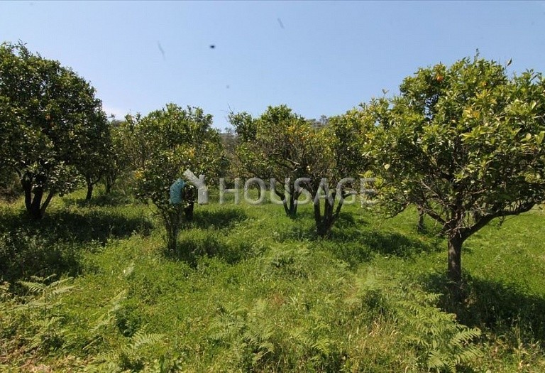 Land for sale in Astrakeri, Kerkira, Greece - photo 1
