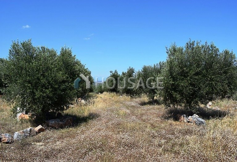 Land for sale in Kirianna, Rethymnon, Greece - photo 8