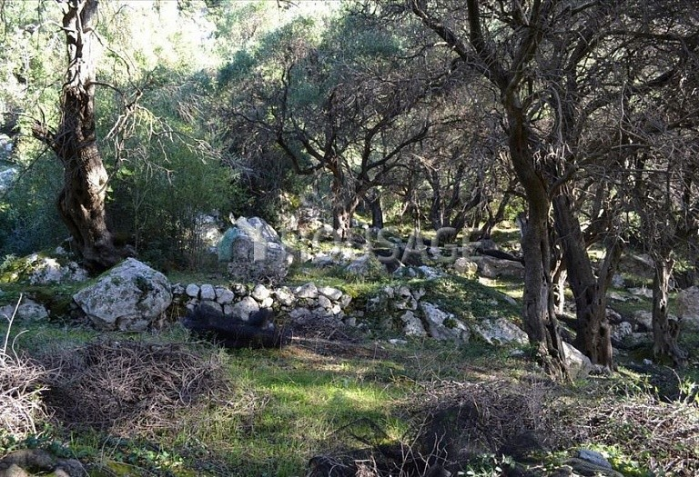 Land for sale in Pentati, Kerkira, Greece - photo 5
