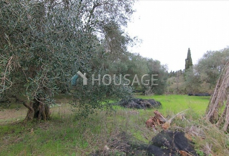 Land for sale in Perivoli, Kerkira, Greece - photo 6