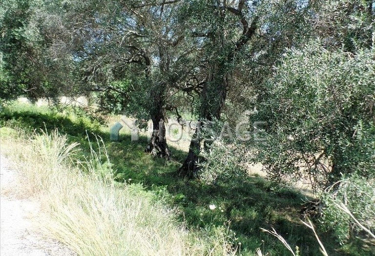 Land for sale in Kanali, Kerkira, Greece - photo 6