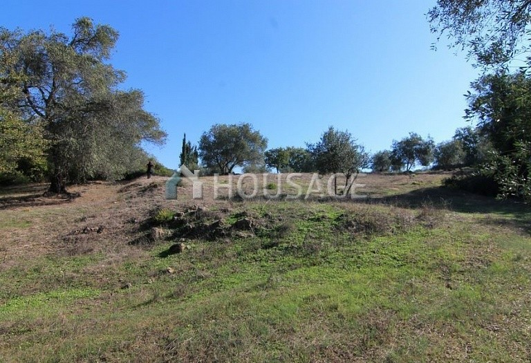 Land for sale in Ано Korakiana, Kerkira, Greece - photo 5