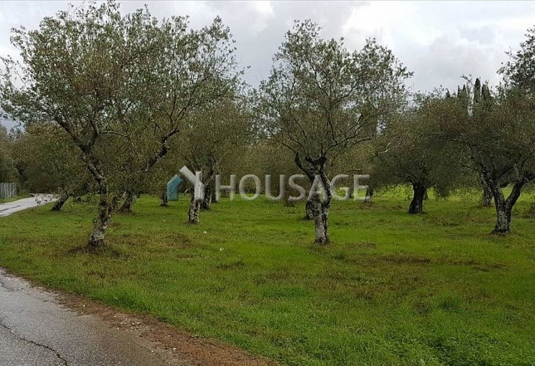 Land for sale in Kerkira, Greece - photo 3