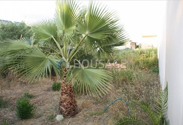 Land for sale in Perivoli, Chania, Greece - photo 4