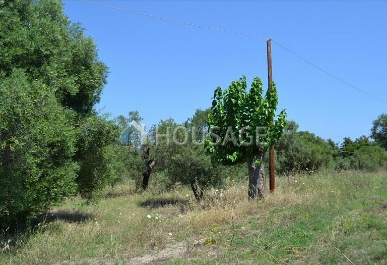Land for sale in Hanioti, Kassandra, Greece, 1000 m² - photo 2