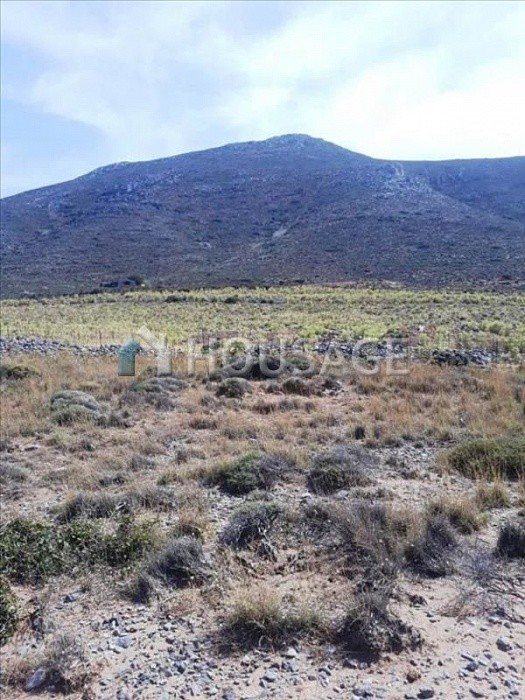 Land for sale in Palaikastro, Lasithi, Greece - photo 2