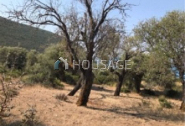 Land for sale in Lefkada, Greece - photo 3