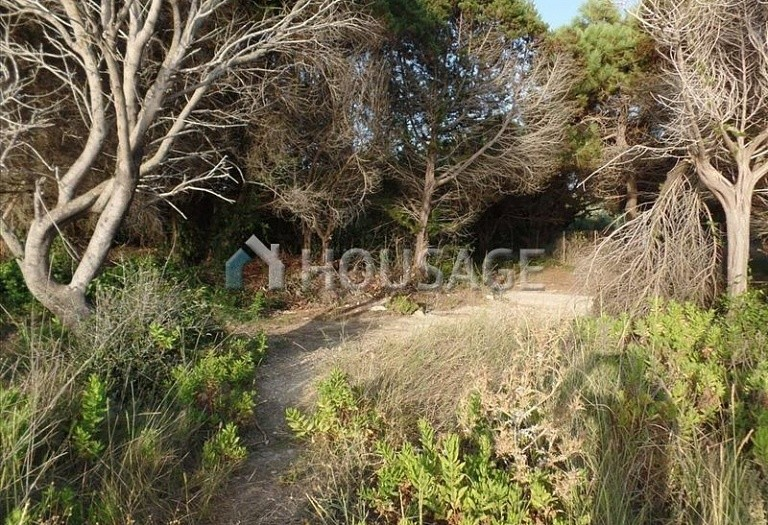 Land for sale in Chalikouna, Kerkira, Greece - photo 7