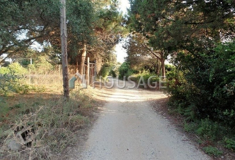 Land for sale in Chalikouna, Kerkira, Greece - photo 6