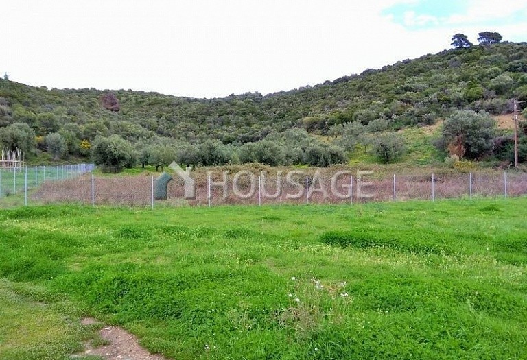 Land for sale in Toroni, Sithonia, Greece - photo 7