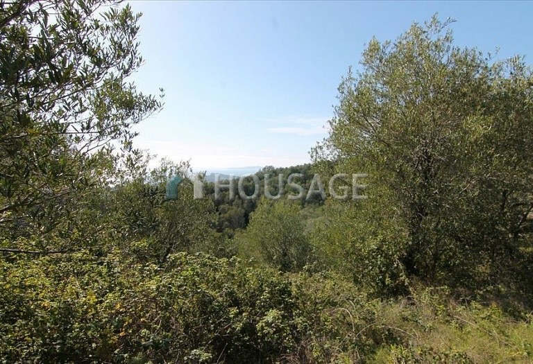 Land for sale in Barbati, Kerkira, Greece - photo 5