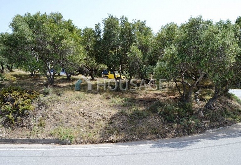 Land for sale in Siteia, Lasithi, Greece - photo 5