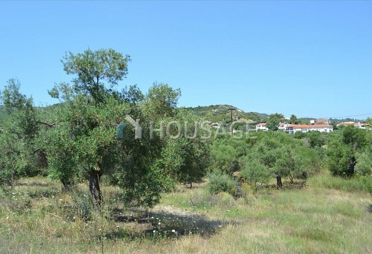 Land for sale in Hanioti, Kassandra, Greece, 1000 m² - photo 3
