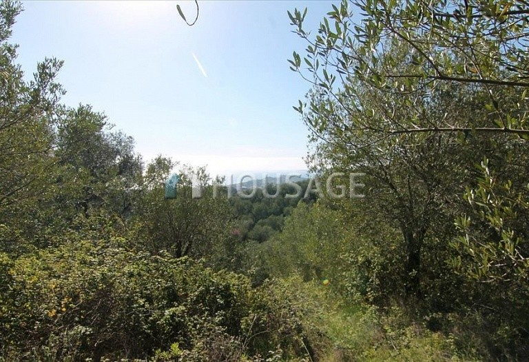 Land for sale in Magoulades, Kerkira, Greece - photo 1