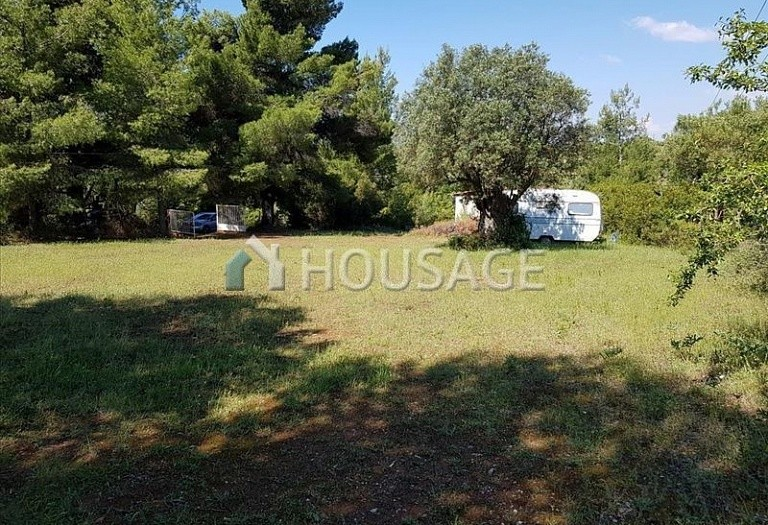 Land for sale in Nikitas, Sithonia, Greece - photo 5