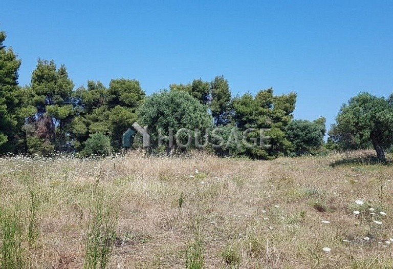 Land for sale in Posidi, Kassandra, Greece - photo 3