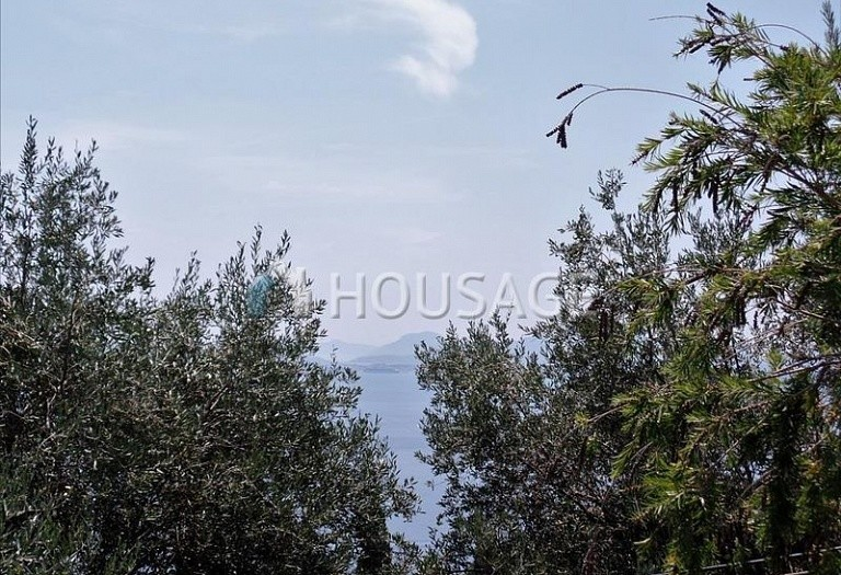 Land for sale in Nisaki, Kerkira, Greece - photo 3