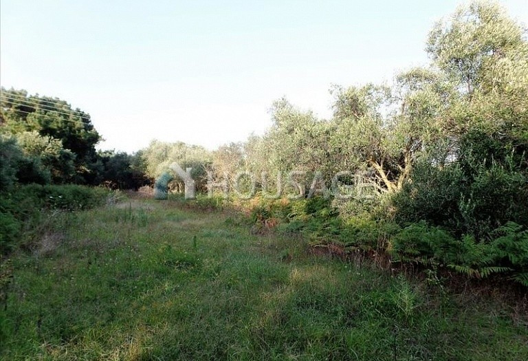 Land for sale in Chalikouna, Kerkira, Greece - photo 4