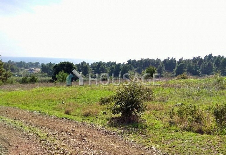 Land for sale in Ormylia, Sithonia, Greece - photo 4